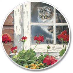 Cat In Window Car Coaster (Set of 2)