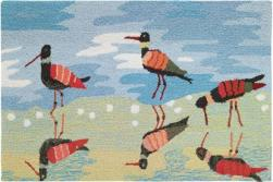 Reflective Sandpipers Accent Rug